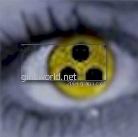 GinkWorldCD2004.jpg